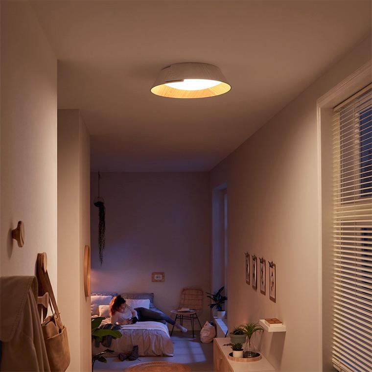 Flot og enkel loftlampe